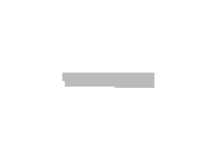 no-excess_gray